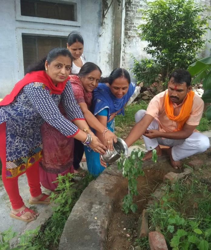 प्राईमरी स्कूल रादौर में पौधारोपण करती नगरपार्षद डॉ प्रीत गर्ग व अन्य।