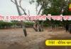 yamunanagar hulchul chhachhrauli flood