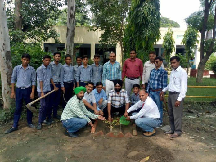 yamunanagar hulchul govt school bhatoli (2)