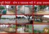 yamunanagar hulchul poori khabar flood
