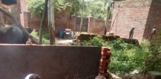 गांव बापौली में हवनयज्ञ क रते ग्रामीण।