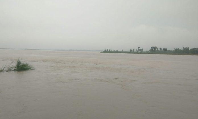 yamunanagar hulchul radaur yamuna river flood 17 उफान पर बहती यमुनानदी।
