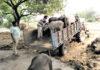 नगरपालिका रादौर के कर्मचारी आवारा पशुओं को ट्रैक्टर ट्राली से गौशाला ले जाते हुए।