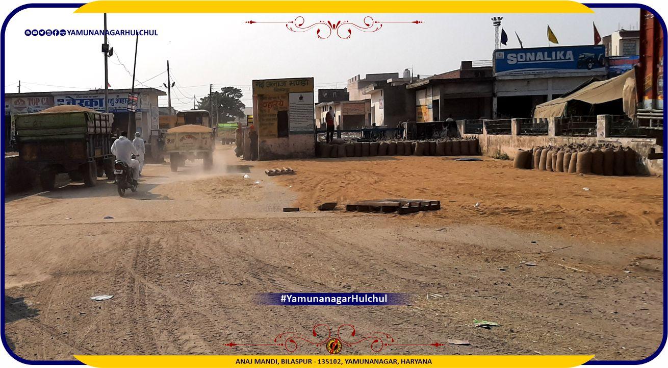 Anaj Mandi Bilaspur, Yamunanagar, #Bilaspur, Bilaspur, Yamunanagar Hulchul #YamunanagarHulchul #यमुनानगरहलचल #यमुनानगर_हलचल, Pandit Khabri, #PanditKhabri, Yamunanagar Bazaar Hulchul, Places of Interest in Yamunanagar, Famous Chowk in Yamunanagar, Famous places in Yamunanagar, Famous places in Bilaspur, Famous Chowk in Bilaspur, For more detail please visit https://yamunanagarhulchul.com/